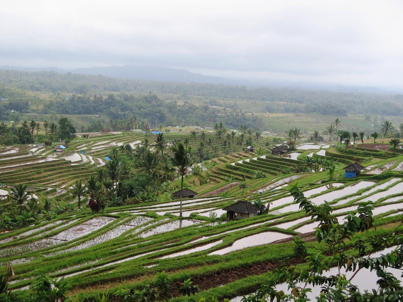 Voyage vélo Indosésie, Voyage d'Ailleurs, Panorama Lempo Tinimbayo, Bali