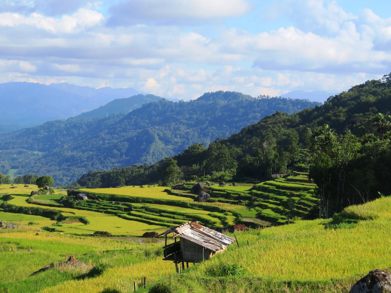 Voyage vélo Indosésie, Voyage d'Ailleurs, Panorama Lempo Tinimbayo, Sulawesi